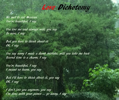 Love Dichotomy_edited